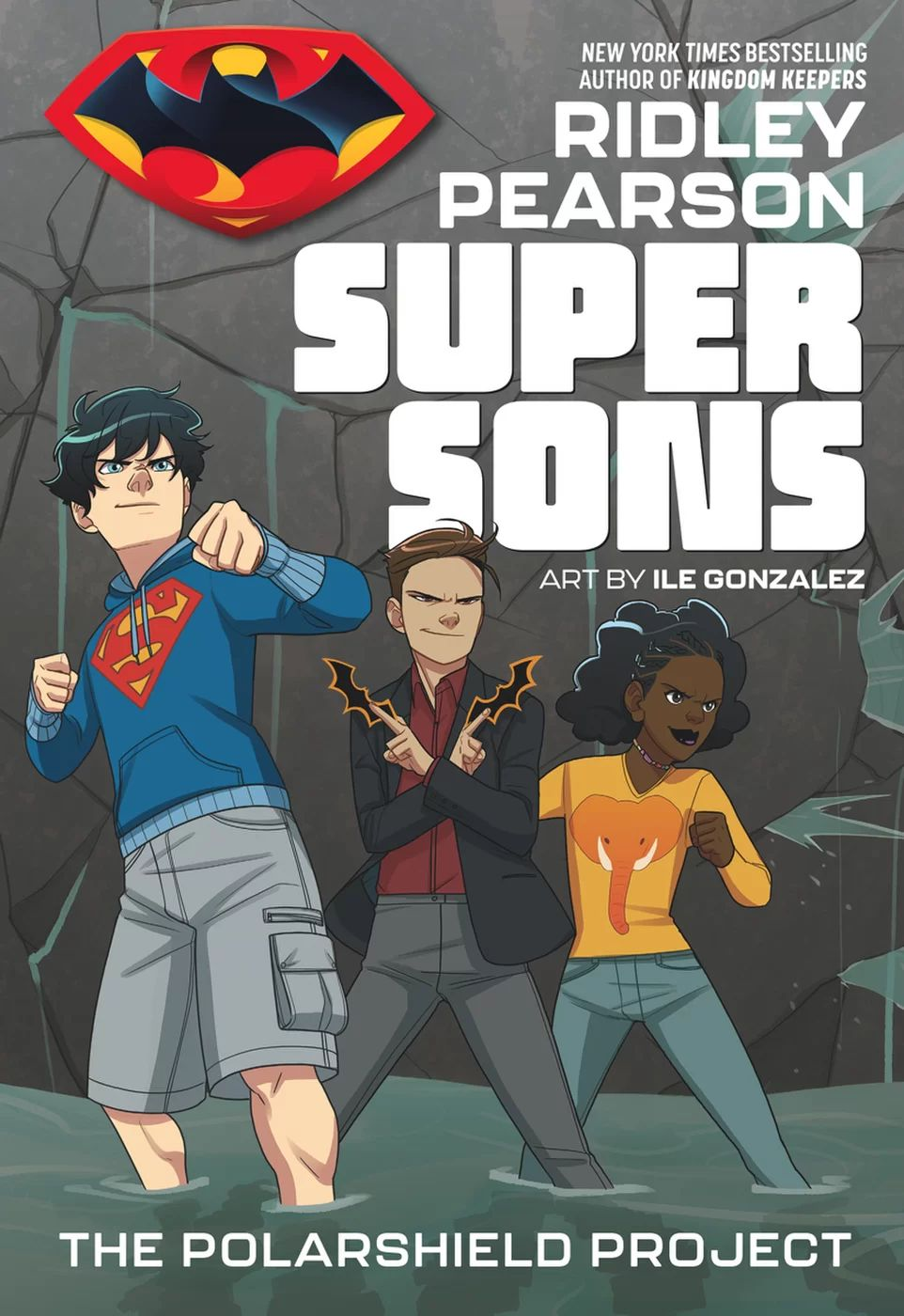 Super Sons The Polarshield Project